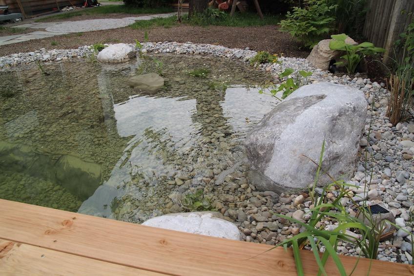Der Quellstein wurde in den Teich integriert. (München)