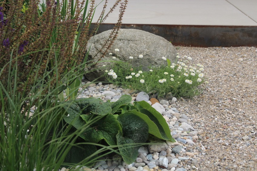 Befestigung mit Mineralbeton, die sich in Kiesbeeten verläuft. Bepflanzung mit Römerkamille, Vergissmeinnicht, Ziersalbei und Gräsern. (Freising)